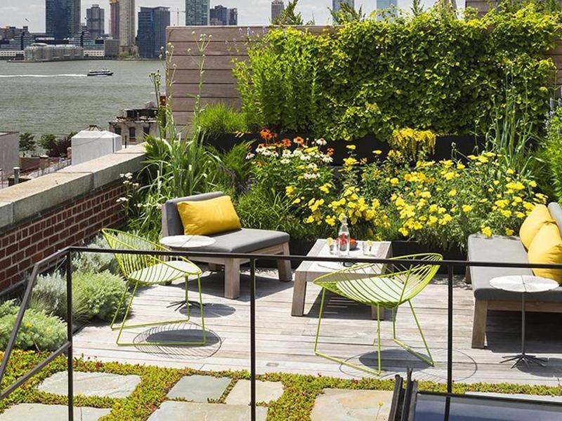 Sử dụng cây xanh làm biện pháp chống nóng mái bê tông đem đến không gian tươi mát, tăng tính thẩm mỹ cho ngôi nhà