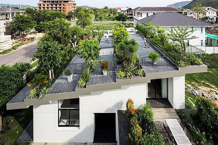 Trống nóng cho ngôi nhà bằng cách trồng nhiều cây xanh xung quanh không gian nhà